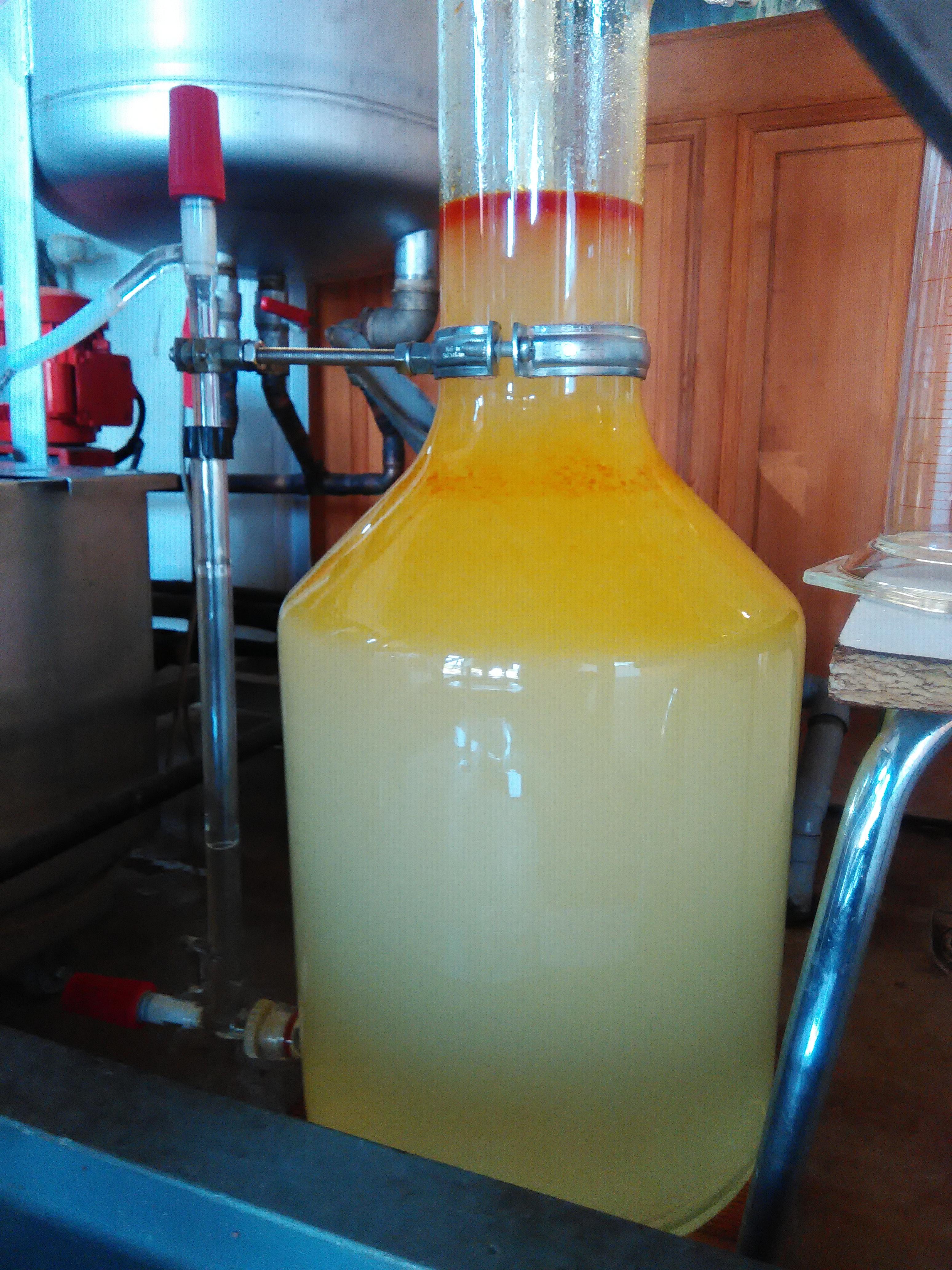 Notre essencier montrant l'huile essentielle qui surnage, rouge au dessus et jaune en dessous